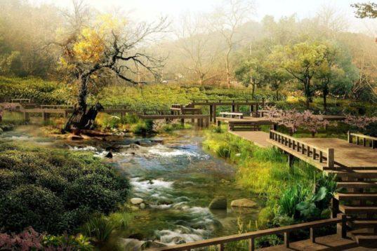Η Έννοια των θεραπευτικών κήπων