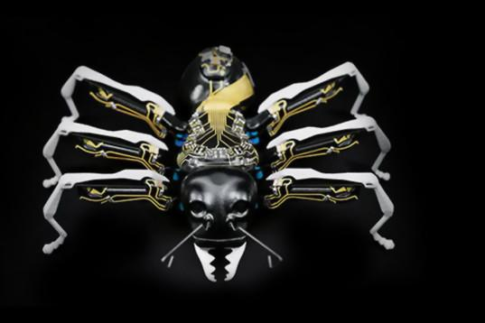 Festo's Ants And Butterflies