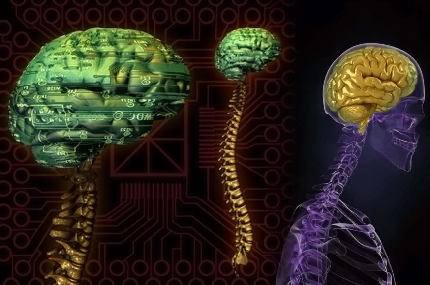 Τεχνητός Εγκέφαλος Μιμείται