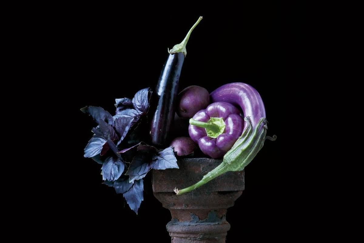 terrapapers.com_eggplant (2)