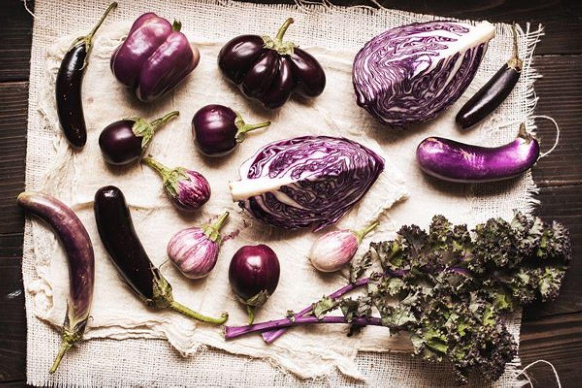 terrapapers.com_eggplant (4)