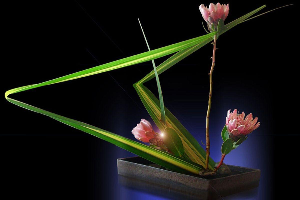 terrapapers.com ikebana (8)
