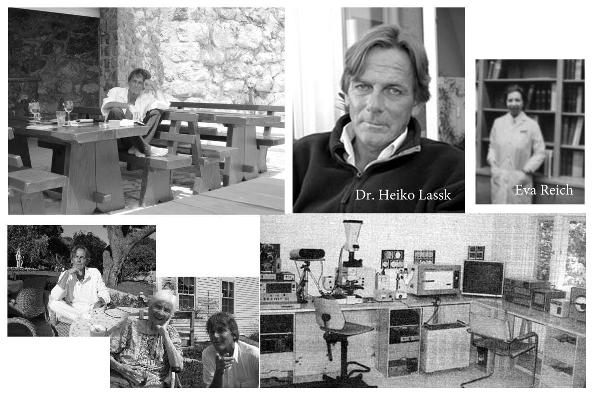 Dr. Heiko Lassk