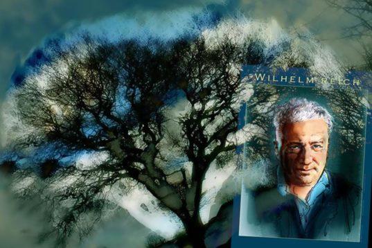 Ο παράξενος κύριος Wilhelm Reich