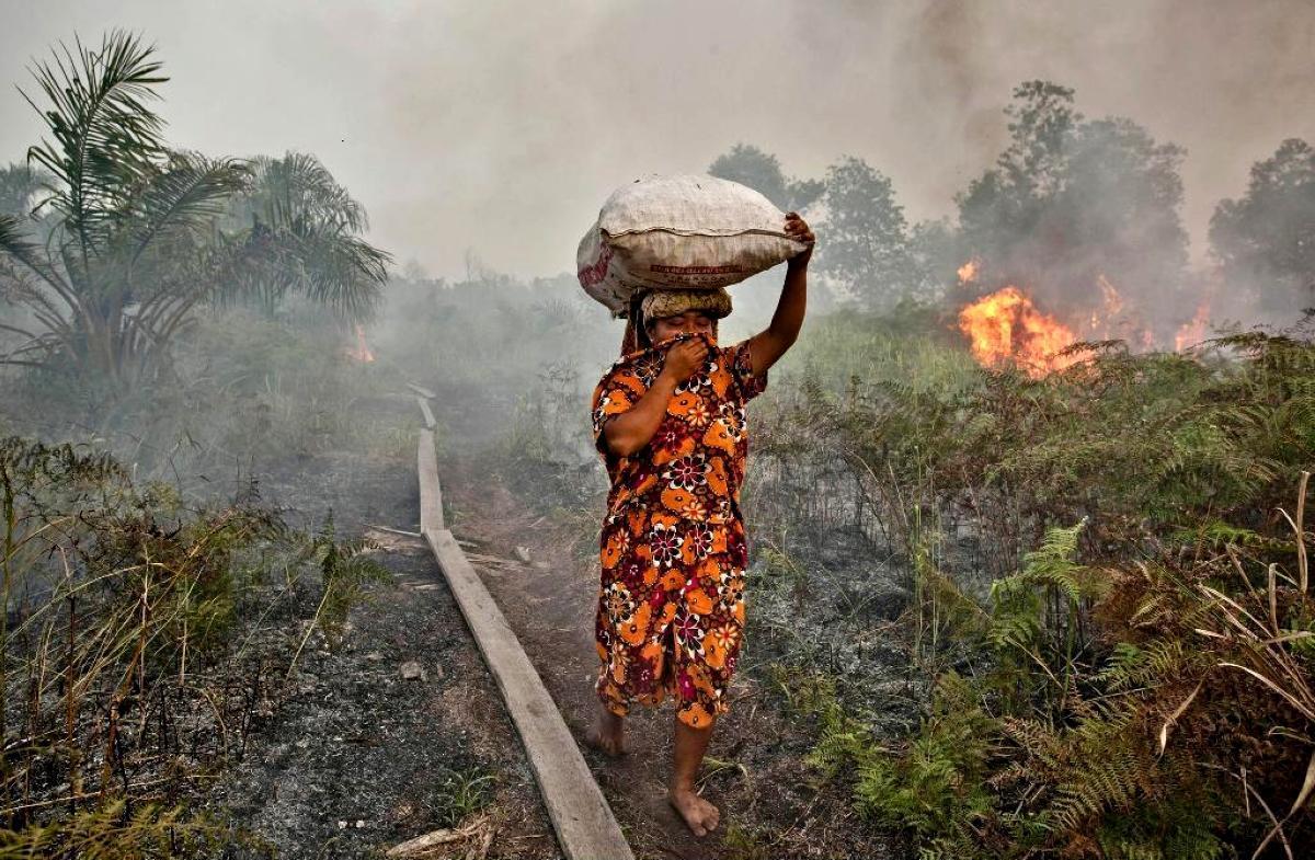 Riau-fires1