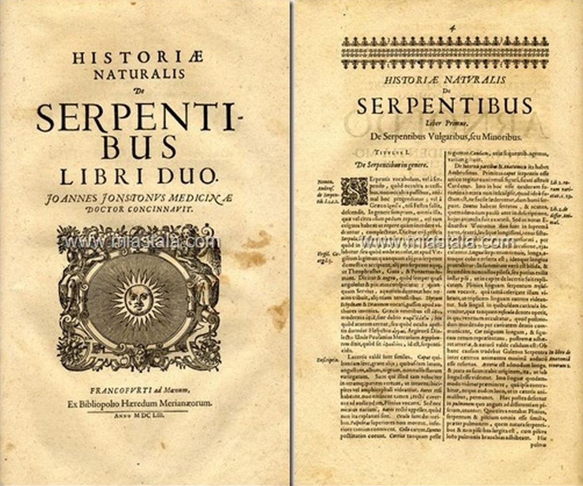 terrapapers.com-Serpentibus και Draconibus 1653 -Ph.D. Joannes Jonstonus (17)
