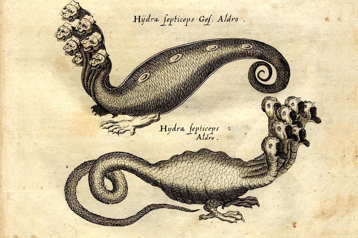 terrapapers.com-Serpentibus και Draconibus 1653 -Ph.D. Joannes Jonstonus (18)