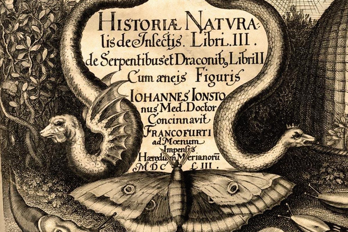 terrapapers.com-Serpentibus και Draconibus 1653 -Ph.D. Joannes Jonstonus (a)