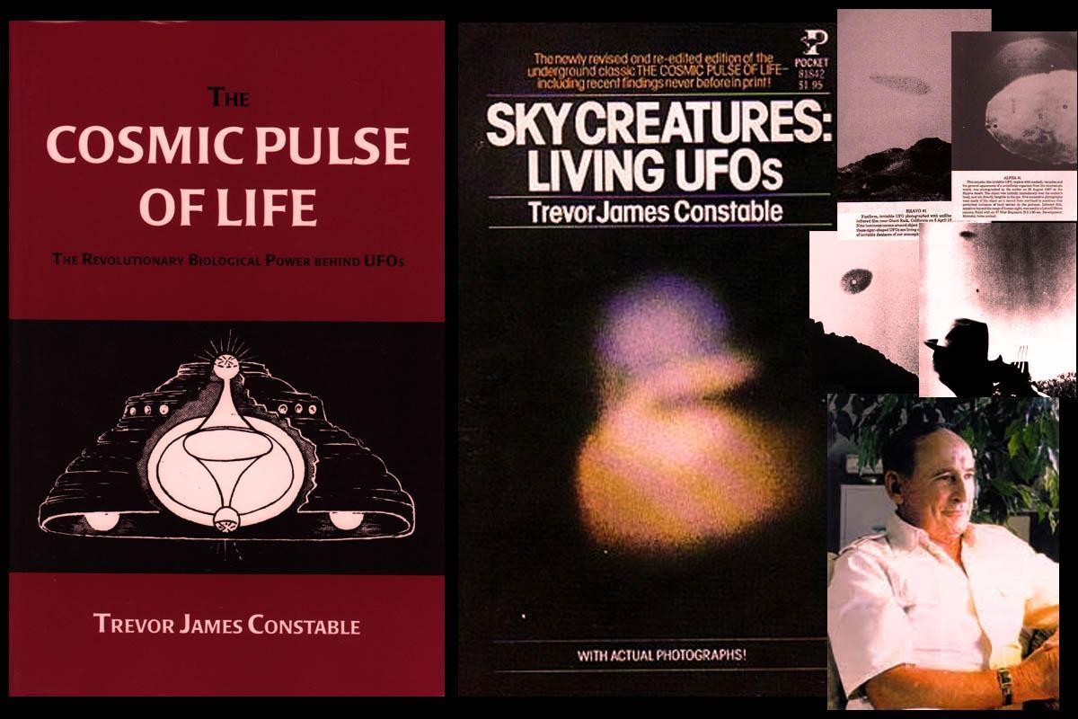 Trevor James Constable UFO