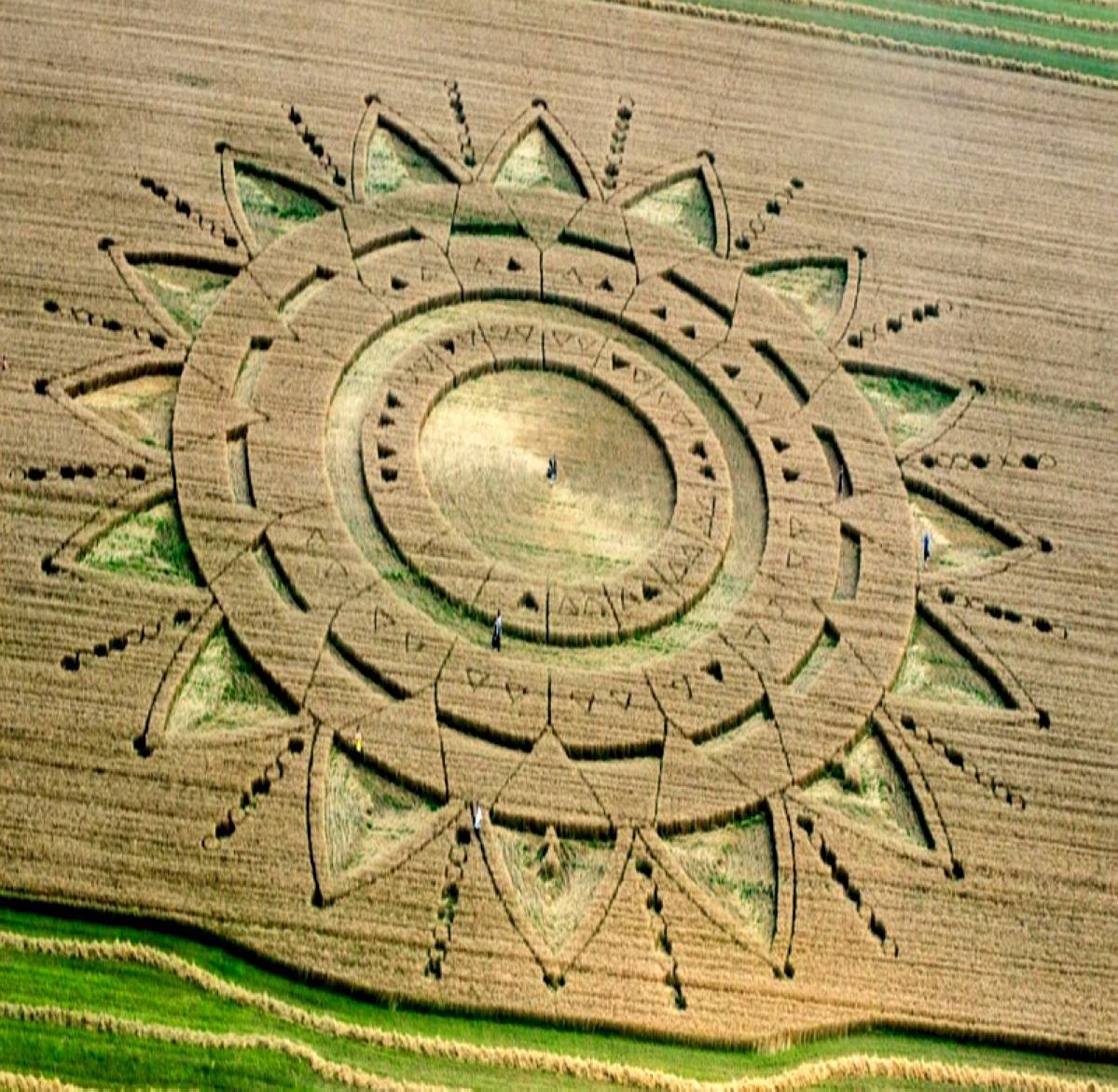 crop-circles-12