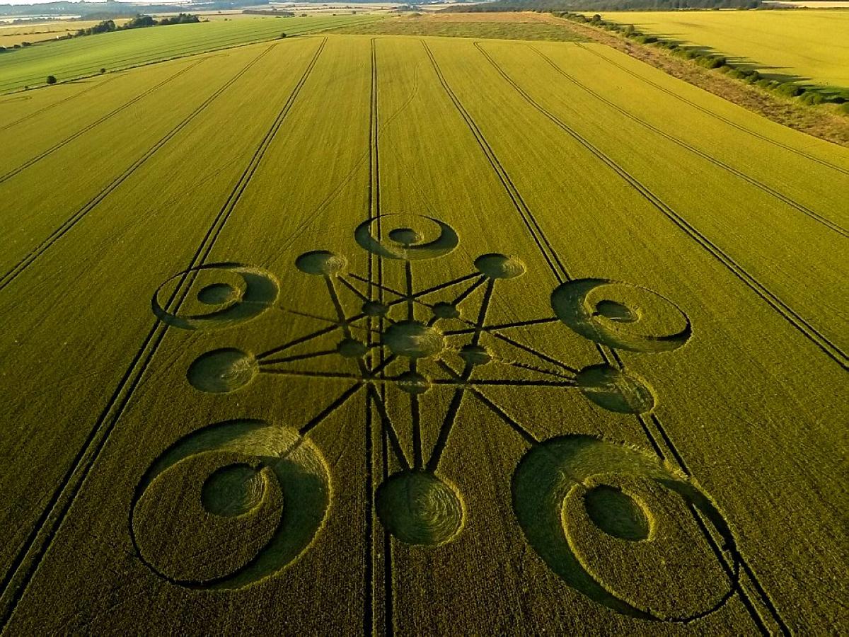 crop-circles-18