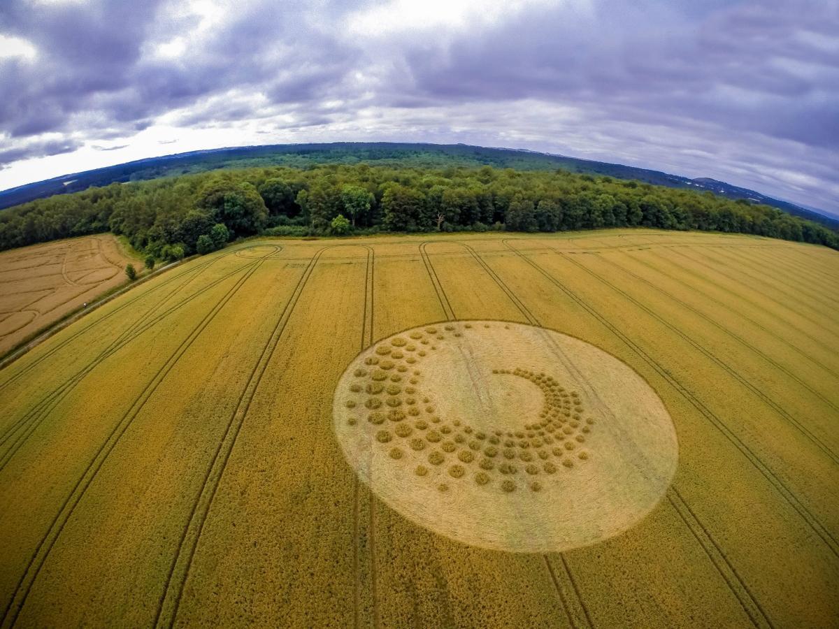 crop-circles-22