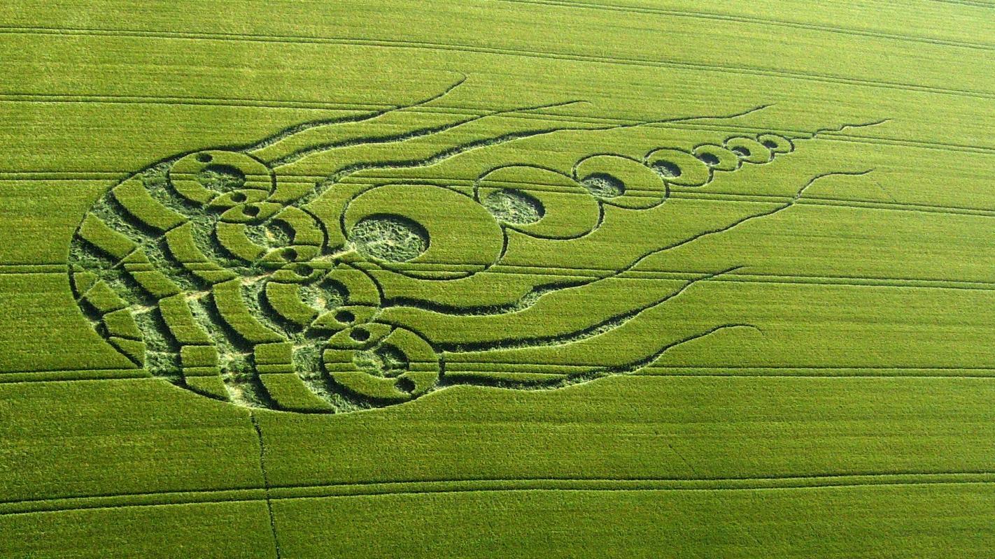 crop-circles-24