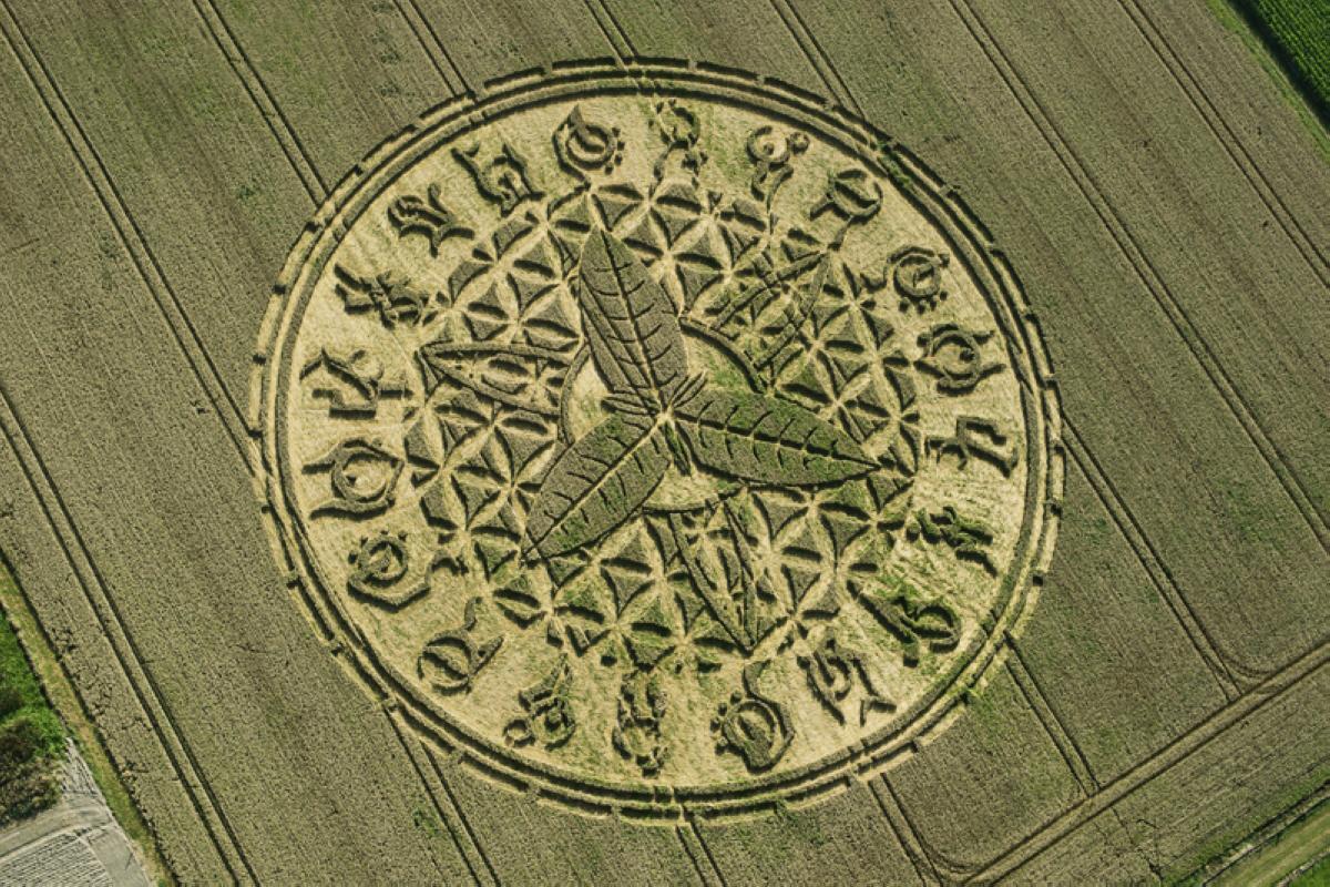crop-circles-25