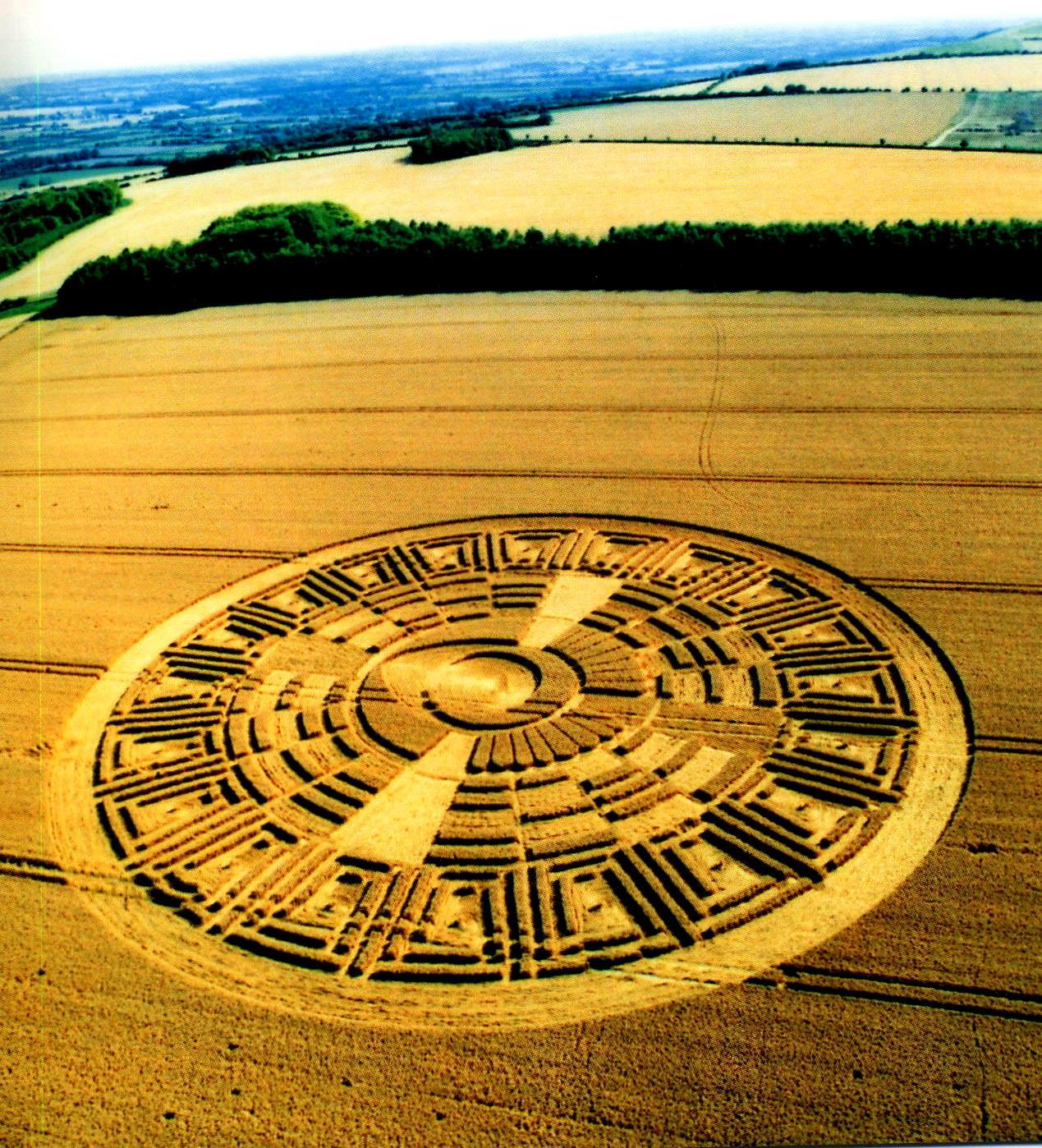 crop-circles-29