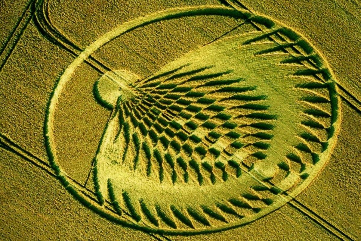 crop-circles-3