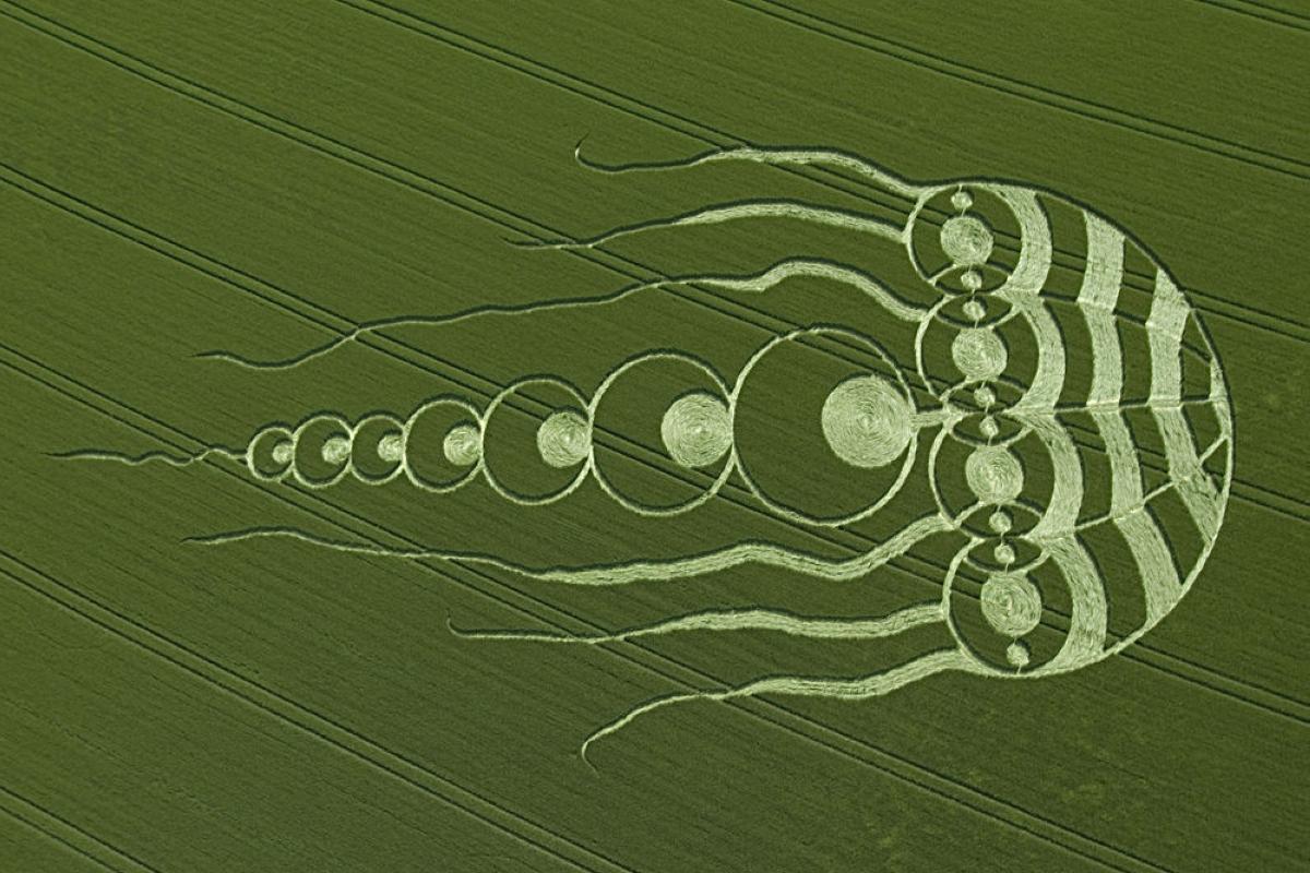 crop-circles-34