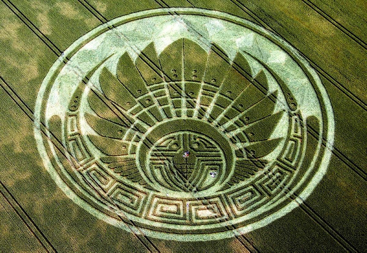 crop-circles-35