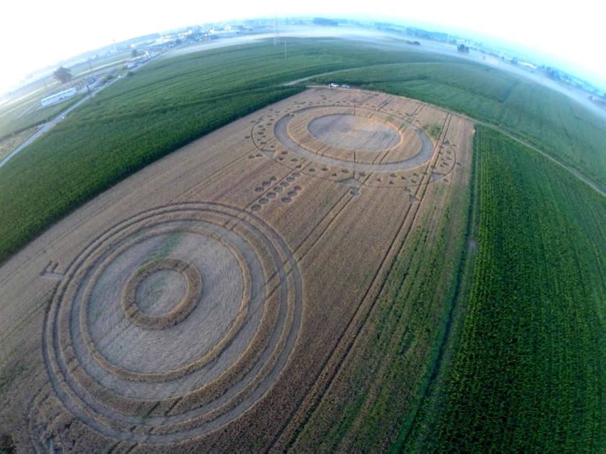 crop-circles-37