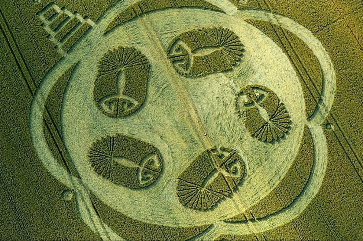 crop-circles-40