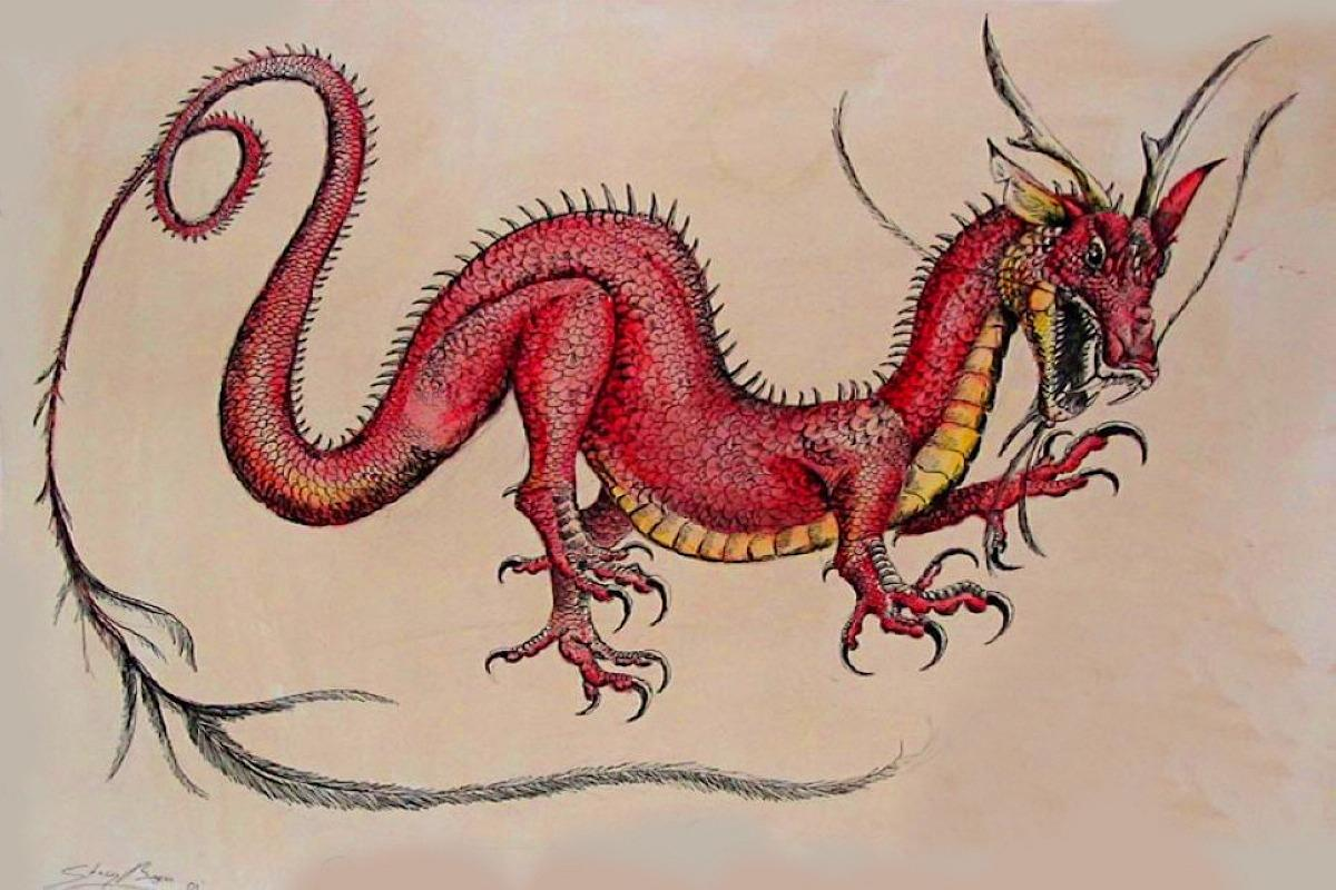 15-Indian-Dragons