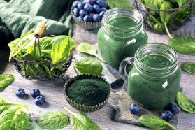 Spirulina: μη ζωική πρωτεΐνη